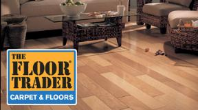 Pet Friendly Flooring in Jacksonville FL
